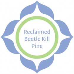 MKT1482-Retail-Display-Beetle-Decal